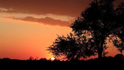 sunrise-5110334_1280