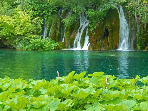 plitvice-lakes-1235224_1280
